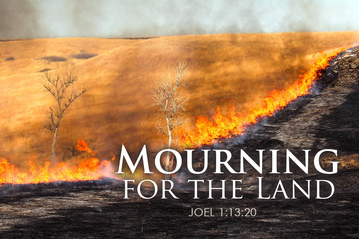 Joel 1:13-20 Mourning for the Land