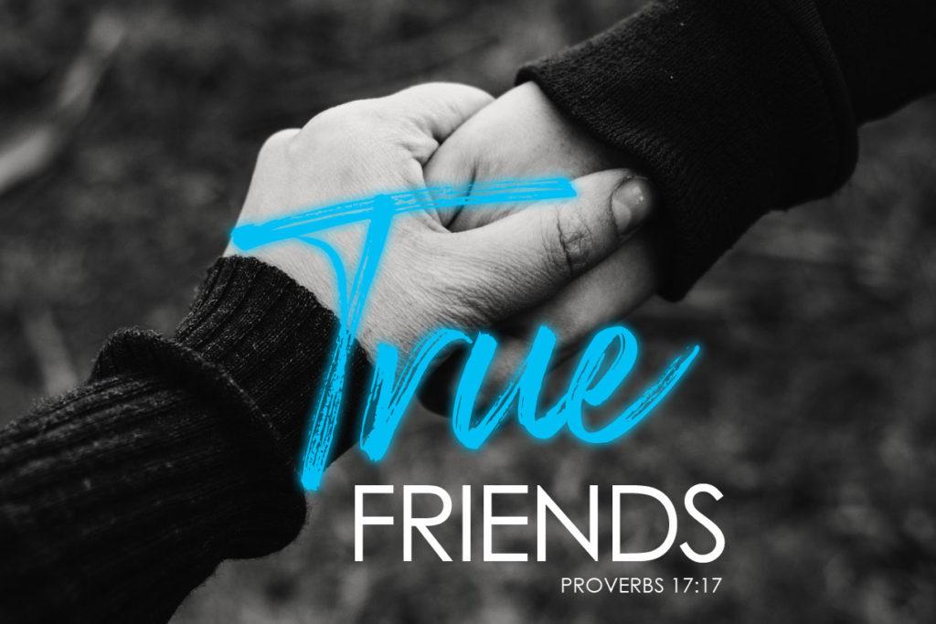 Proverbs 17:17 True Friends